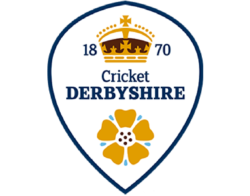 Derbyshire Cricket Foundation Logo